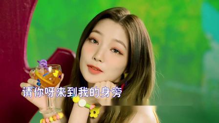 DJ舞曲 野花香 莫斯满 老猫 1080P