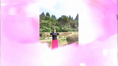 美玲玉广场舞《盼阿哥》编舞:雨夜老师