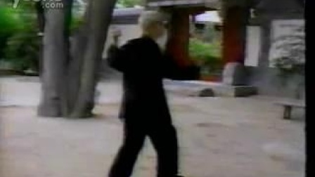 吴图南先生太极拳快架