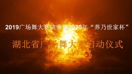 2.舞龙《中国龙》 汉阳快乐舞龙团