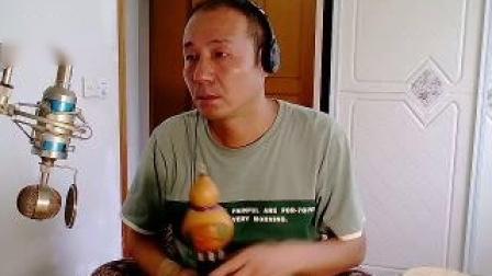 爱如莲花葫芦丝.wmv