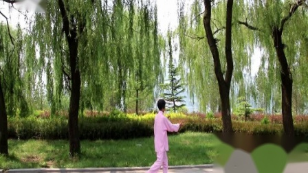 淄博薛丽美演练的《二十四式太极拳》