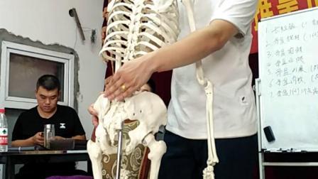 中医正骨治疗股骨头大转子复位骨盆修复手法讲解实操
