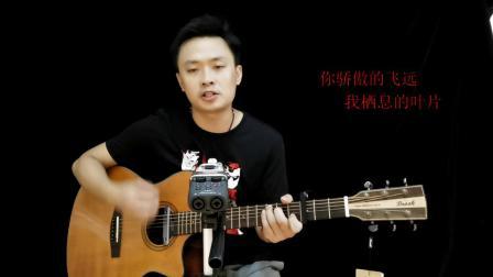 任然《飞鸟和蝉》吉他弹唱教学C调简单版吉他谱