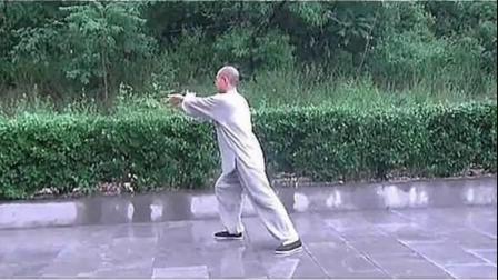 杨式太极拳85式-李占英--重编口令