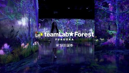 teamLab Forest Fukuoka - SBI SECURITIES Co., Ltd. 日文版
