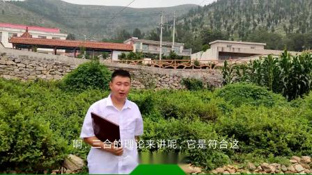 易风最新杨公三合风水考察之丁财两旺的发坟