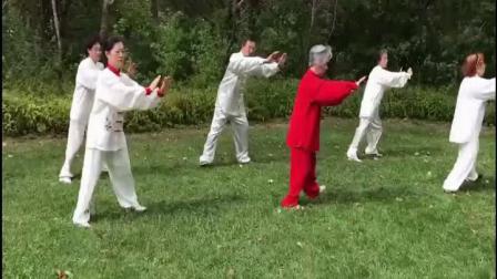万萍等 24式太极拳演练
