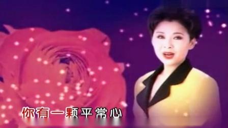 董文华-公仆心vcd普