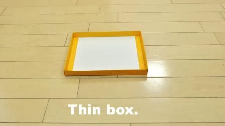 猫咪钻纸箱挑战!对纸箱总是有莫名其妙的喜欢 哈哈哈