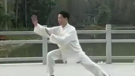 王二平演练陈式太极拳老架二路