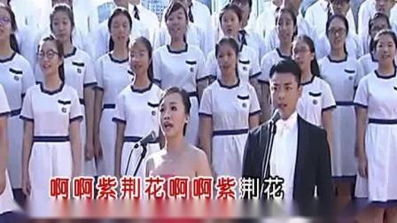 董文华-美丽的紫荆花vcd宽