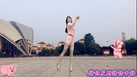 2019最新俏皮可爱广场舞《小猪猪》附分解教学_超清