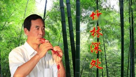 竹林深处  葫芦丝演奏杨兴义