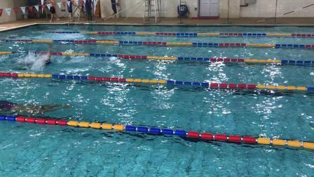50米仰泳 5道施圣海 2道洪伟淳 2020游泳周周赛 宝山通河