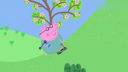 小猪佩奇:佩奇和弟弟骑车上学,猪爸爸在后面追,可把他累坏了