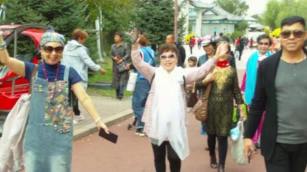 哈尔滨第十七届菊花展