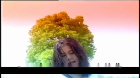 田震-野花(OK版)