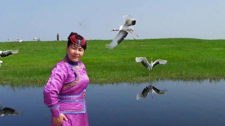 20役情后段的北陲之旅-游扎龙自然保护区