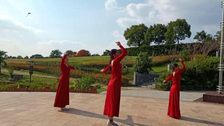 自创 舞蹈红枣树