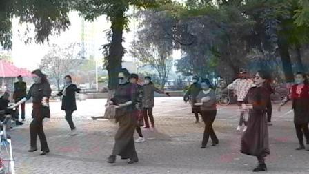 秦皇岛汤河公园广场舞4.avi