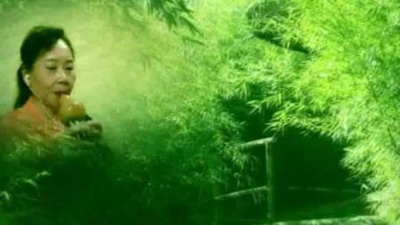 葫芦丝《竹林深处》尖椒