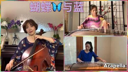 蝴蝶与蓝 古筝与大提琴