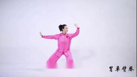 健身气功八段锦刘晓蕾演练