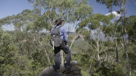 悉尼及蓝山自然遗产之旅
