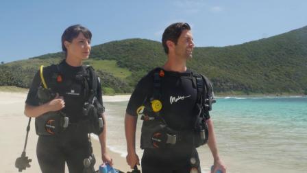悉尼及豪勋爵岛旅游