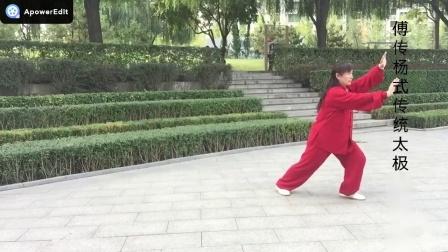 傅传杨式传统太极拳28式:王希红(14)