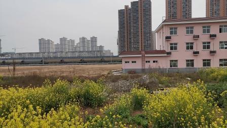 20200322 125807 阳安线HXD2运粮专列出汉中站