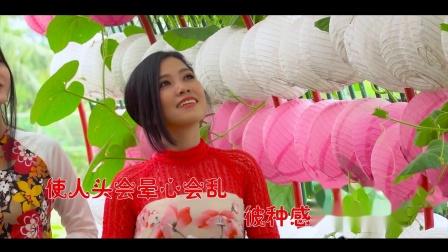 台语 酒梦 李綺綺 1080P 抖音超火爆的歌曲
