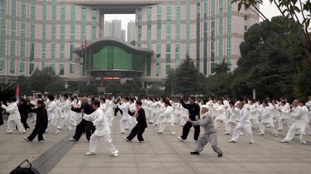 太极泉林周翠芳老师带领耒阳拳友演练85拳
