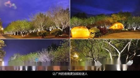"""广州""""一江两岸三带""""核心段景观照明提升工程"""