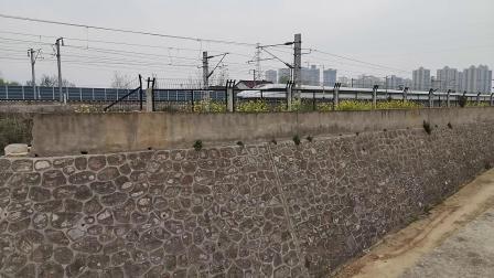 20200322 135914 西成高铁D1960次列车出汉中站