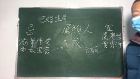 炳钦(传统男女12生肖婚配)狗🐶