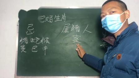 炳钦(传统男女12生肖婚配)猪🐷