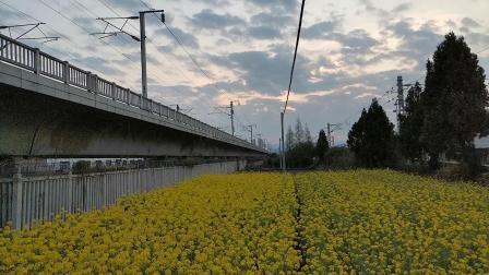 20200323 185734 西成高铁G2218次列车出汉中站