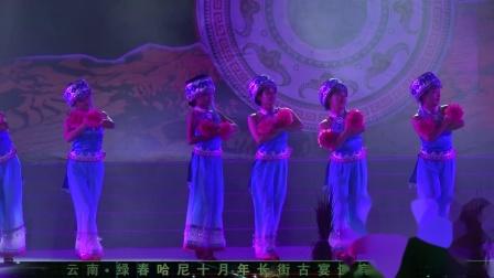 艺联音像-绿春长街宴晚会片段之《三弦樱花》