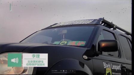 北京青年报 黑豹野保站和森林公安护鸟宣传.mov