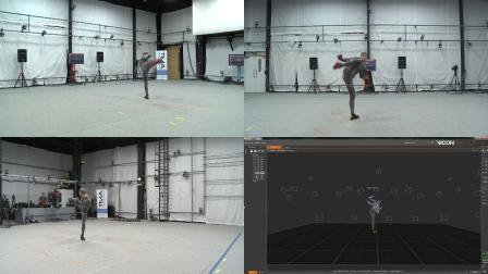 Vicon Motion Capture Shadow Boxing