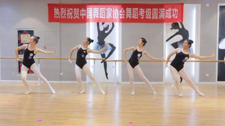 30.十级舞蹈考级 1080 60
