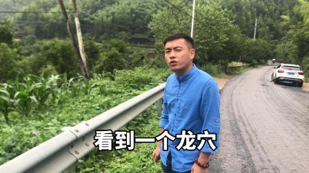 龙形开账  闽南大师吴福松遇到形峦非常好的宝地   寻龙点穴视频