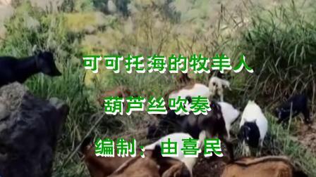可可托海的牧羊人(bB).mpg