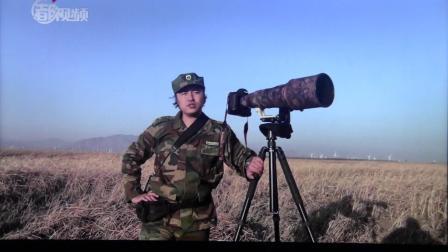 黑豹野保站 北京日报 候鸟高峰期.mov