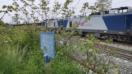 20200404 135951 阳安线HXD2货列通过王家坎站