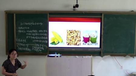 优质课视频-0c08a3a5437dda6df92756c21e16d693