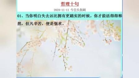 哲理十句 MV_202011150736