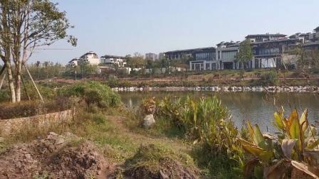 重庆璧山古道湾公园风光